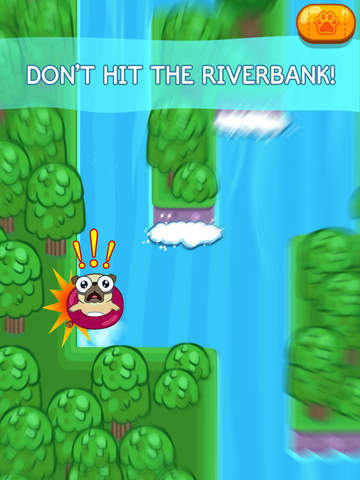 Screenshot 4 Pug Rapids