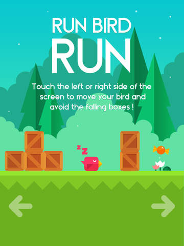 Run Bird Run iPhone iPad