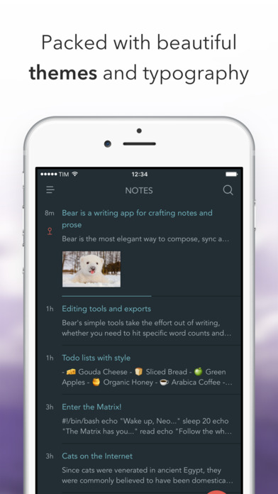 Bear - beautiful writing app for notes and prose Screenshot