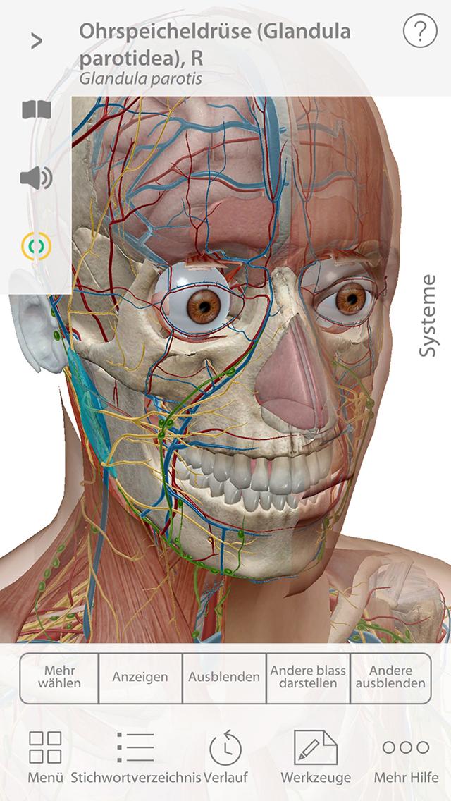 Ziemlich Beste App Für Anatomie Und Physiologie Klasse ...