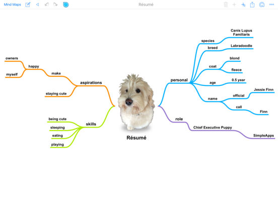 SimpleMind+ Intuitives Mindmapping Screenshot