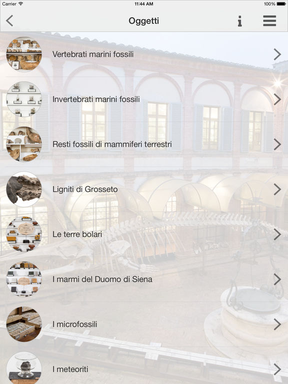 Museo in tasca Screenshot