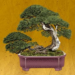 つい 盆栽 放置系ゲームアプリ Naver まとめ