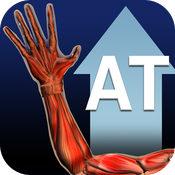 Upper Extremity Injury Evaluation icon