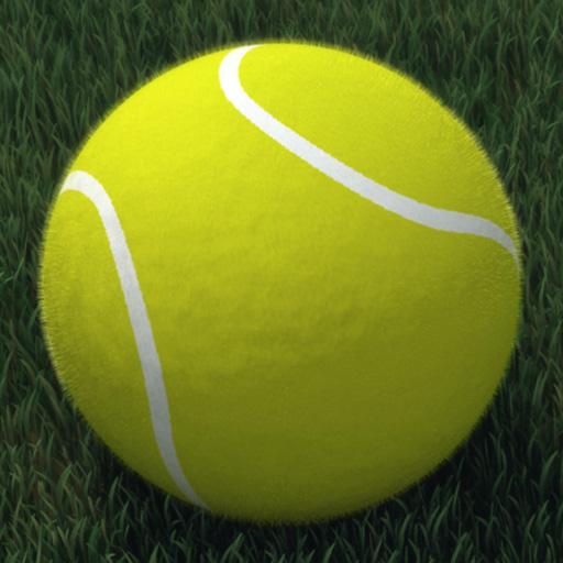 Touch Tennis: FS5