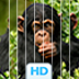 Animal Puzzles HD: Sliding Slices