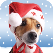 Christmas Pet Countdown - How many sleeps to Christmas? icon