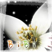 BIBI_抒情性小说 Bibi the Lyrical Visual Novel