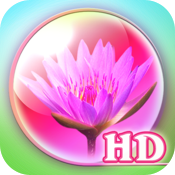 Zepi:Spring HD icon