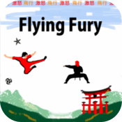 Flying Fury icon