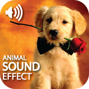 Best Animal Sound Effect icon
