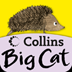 Collins Big Cat: It Was a Cold, Dark Night Story Creator