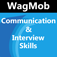 Communication and Interview Skills