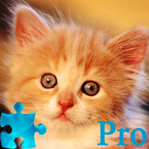 Amazing Kitty Jigsaw Puzzle Pro