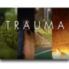 TRAUMA for Mac