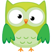 Owls - A matching game for kids. icon