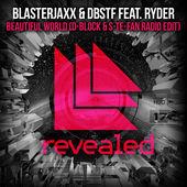 BlasterJaxx & DBSTF – Beautiful World (feat. Ryder) [D-Block & S-te-Fan Radio Edit] – Single [iTunes Plus AAC M4A] (2015)