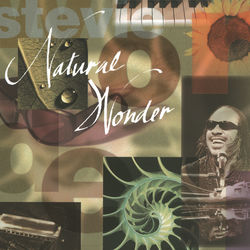 View album Stevie Wonder - Natural Wonder