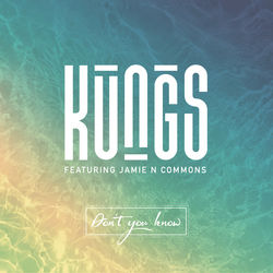 View album Don't You Know (DJ Licious Remix) [feat. Jamie N Commons] - Single