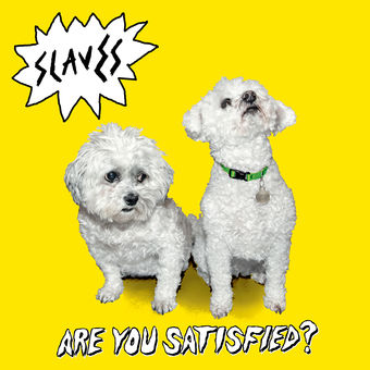 Slaves – Are You Satisfied? (Deluxe) [iTunes Plus AAC M4A]
