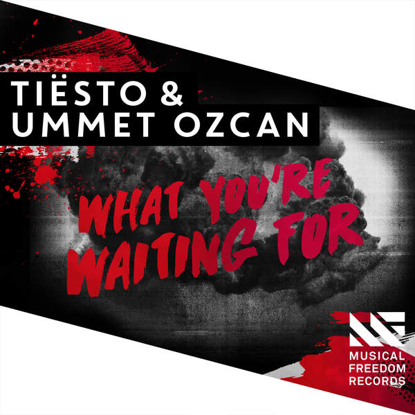 Tiësto & Ummet Ozcan - What You're Waiting For - Single [iTunes Plus AAC M4A] (2016)