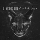 Disclosure – Magnets (feat. Lorde) – Pre-order Single [iTunes Plus AAC M4A] (2015)