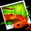 图标创建 Image2icon for Mac