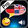 LinguaDict Pro