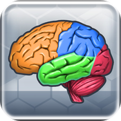 More Brain Exercise Review icon