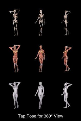 360 Anatomy for Artists - Standing Figure iPhone Screenshot 5