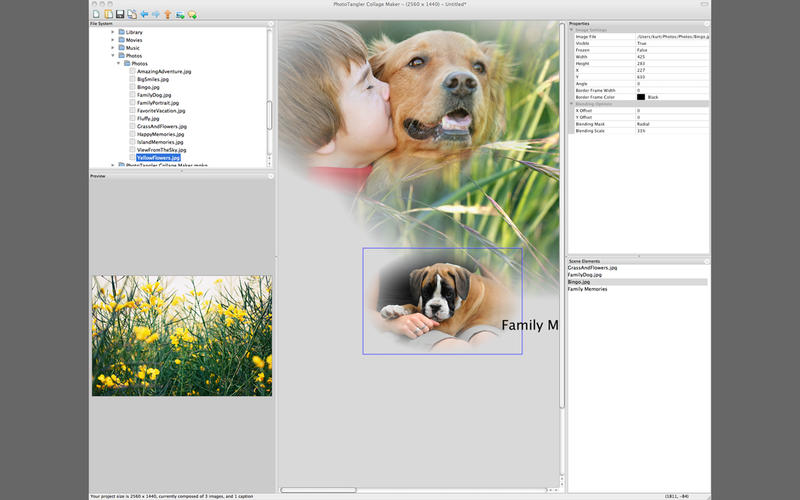 PhotoTangler Collage Maker - 照片拼接软件[OS X]
