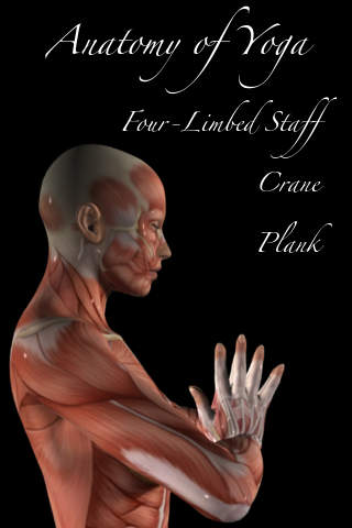 Anatomy of Yoga 2 -Plank Crane and Four-Limbed Staff Pose