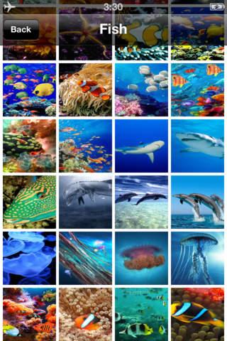 Ocean Animal Lite Wallpaper