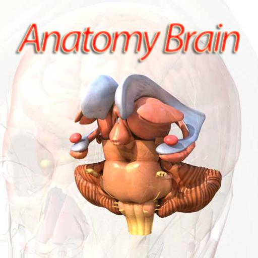 Anatomy Eye 3d Iphone Medical Apps By Imedicsoft