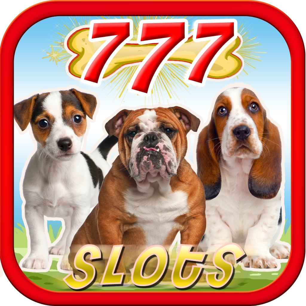 Slots-a-fun casino hot dog
