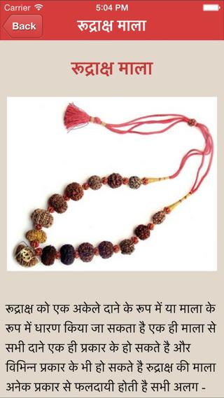 Rudraksha Guide in Hindi
