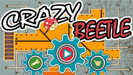 Crazy Beetle Game