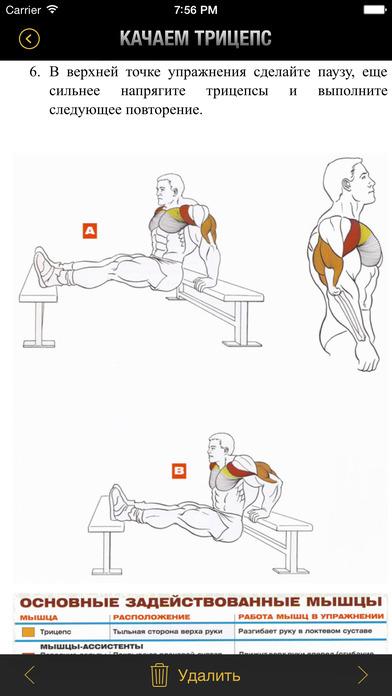 Упражнение на трицепс упражнения в домашних условиях