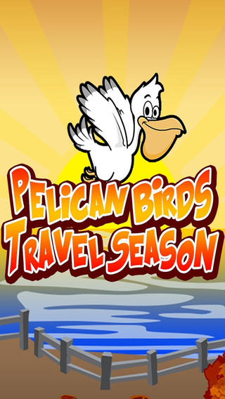 Pelican Birds Travel Season PRO