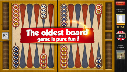 PlayGem Free Social Backgammon