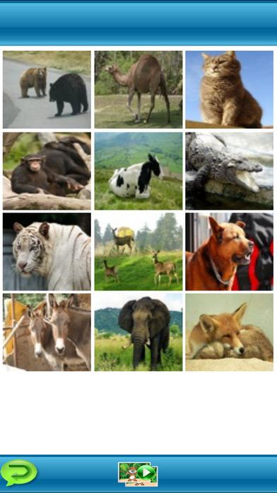 First Animals iPhone Screenshot 2
