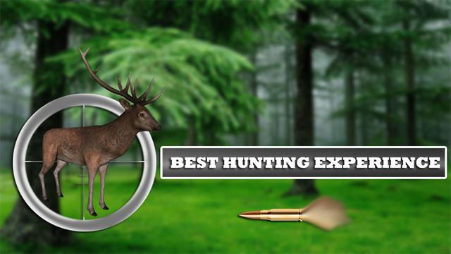 Deer Hunting Animals Jungle