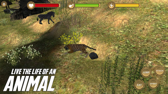 Tiger Simulator - HD