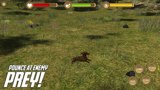 Dachshund Simulator - HD screenshot 2