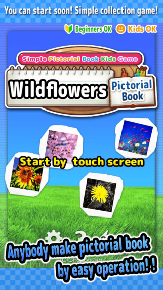 Wildflowers - Simple Pictorial Book Kids Game -
