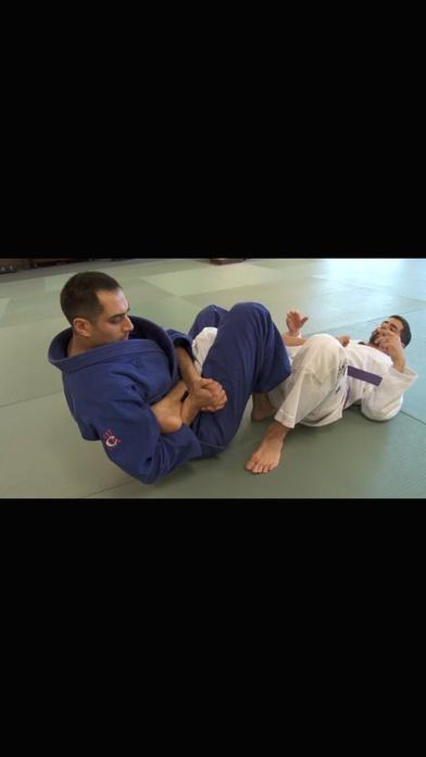 jiu jitsu brown belt requirements apppicker