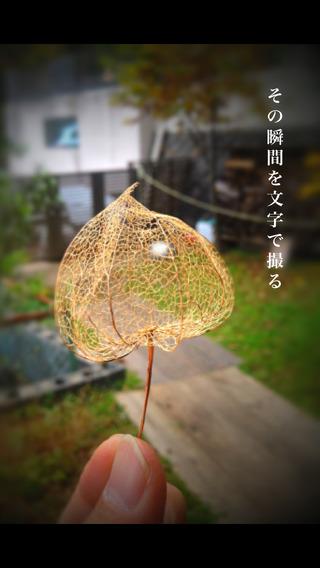 photoikku – haiku/wabi/sabi/miyabi