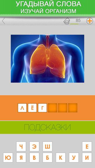Тело человека. Викторина анатомии медицины здоровья. Болезнь вирус организм эпидемия и многое другое