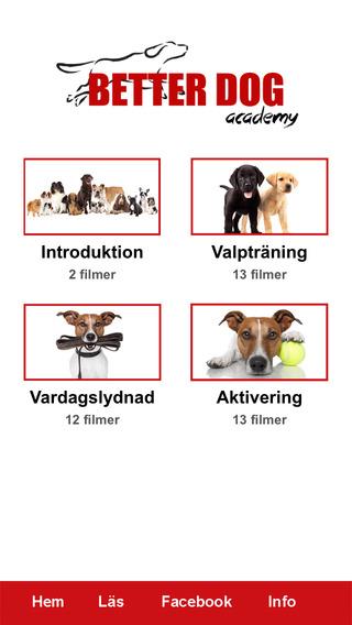 Better Dog Academy World