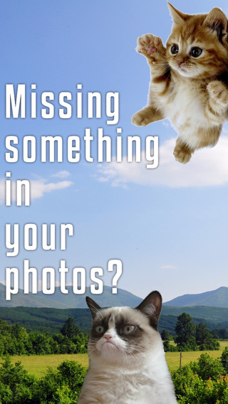 Sticky Cat - Free: Fun Stickers for pics